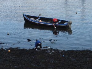 Patrick McDonagh recovers rugby balls from the harbour.